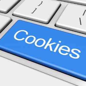internet cookies on Google
